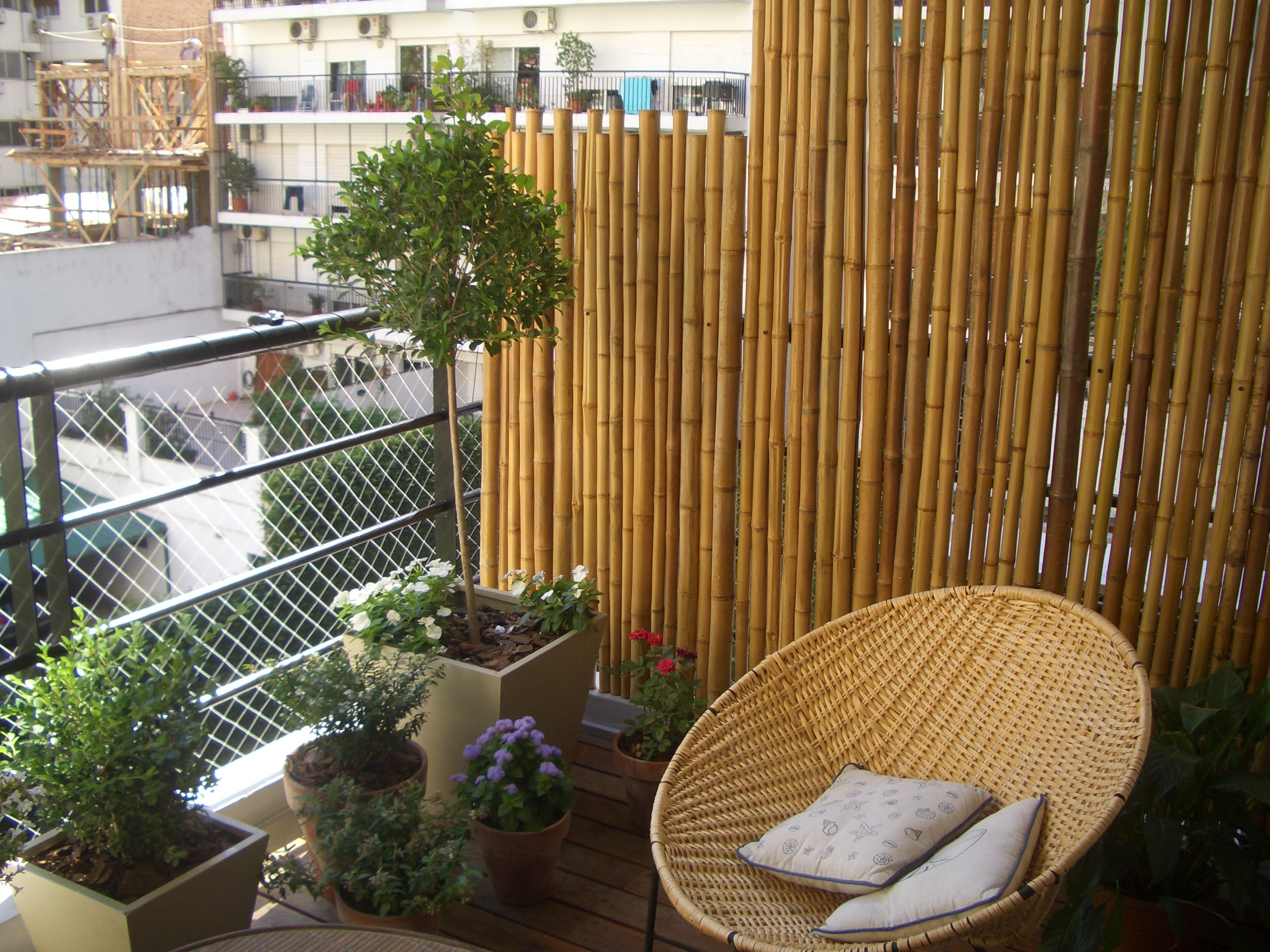 Balcon con ca as en 2019 balcones peque os balcones y - Cana bambu decoracion ...