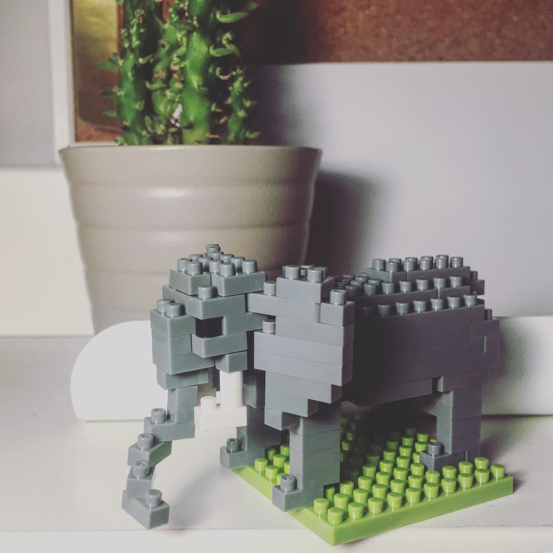 Lego isn't just for kids! #nanoblock #legoforadults #elephant #hobby
