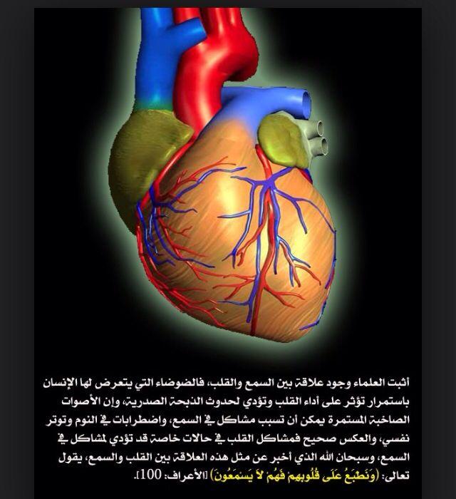 صورة و أية القلب Miracles Of Quran True Words Islam Quran