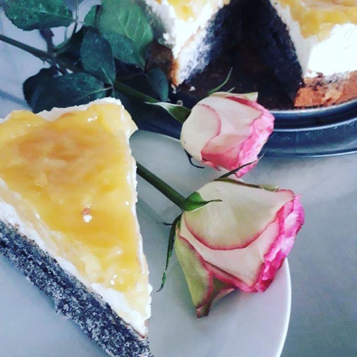 Heute in Rosen gebettet ???? Apfel-Mohntorte und Russischer Zupf #cafekunterbun #blätterteigrosenmitapfel Heute in Rosen gebettet  Apfel-Mohntorte und Russischer Zupf #cafekunterbun #apfelrosenblätterteig Heute in Rosen gebettet ???? Apfel-Mohntorte und Russischer Zupf #cafekunterbun #blätterteigrosenmitapfel Heute in Rosen gebettet  Apfel-Mohntorte und Russischer Zupf #cafekunterbun #blätterteigrosenmitapfel