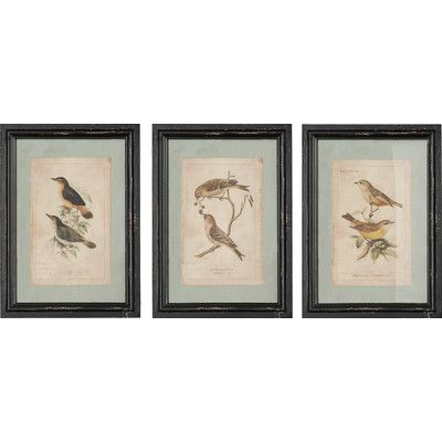 Charlton Home 3 Piece Woodland Bird Wall Decor Set
