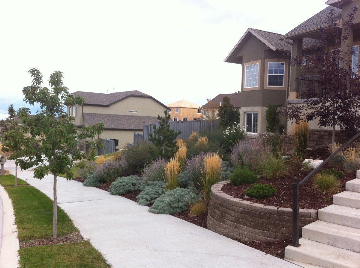 gorgeous front yard landscape