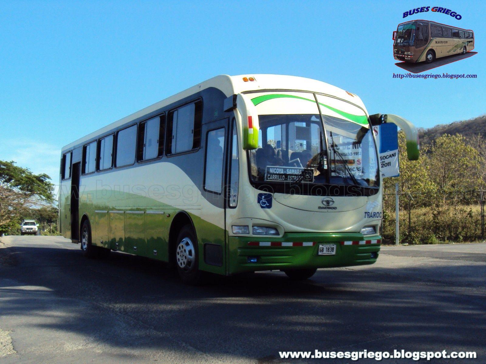 Daewoo BH125M | Daewoo | Pinterest | Bus coach and Cars