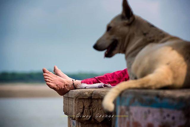 #Peaceful A sadhu resting at the Ghats of #Varanasi. #binoygeorgephotography #binoygeorge #lpmi #NGTIndia #apfmagazine #creativeimagemagazine #LiveBravely #TLPicks #LiveTravelChannel #insidertravel #tripotocommunity #CultureTrip #bbcculture #wonderful_places #tourism #IncredibleIndia #iamnikon #indiaphotosociety #YourShotPhotographer #dslrofficial #photographers_of_india #Culture #discoverindia #OutlookTraveller #people @pictures.of.india @talent.of.india @dslrofficial @indiashutterbugs…