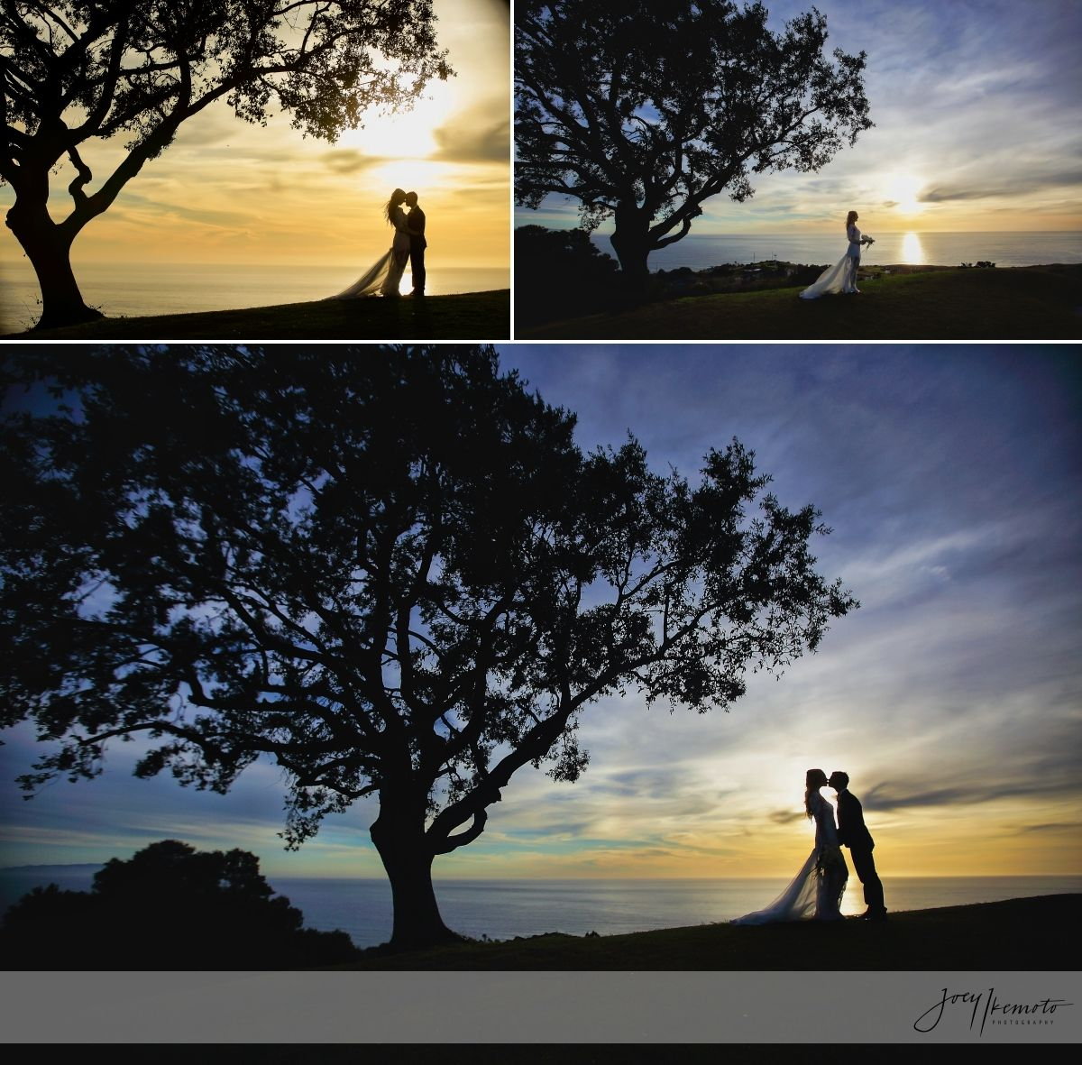 Los Angeles And Torrance Wedding Photographers, The Knot