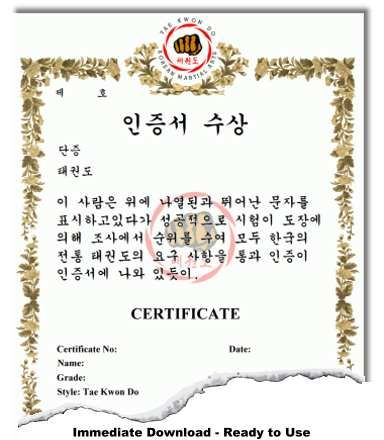 Korean Martial Arts Certificate Templates Certificate Art