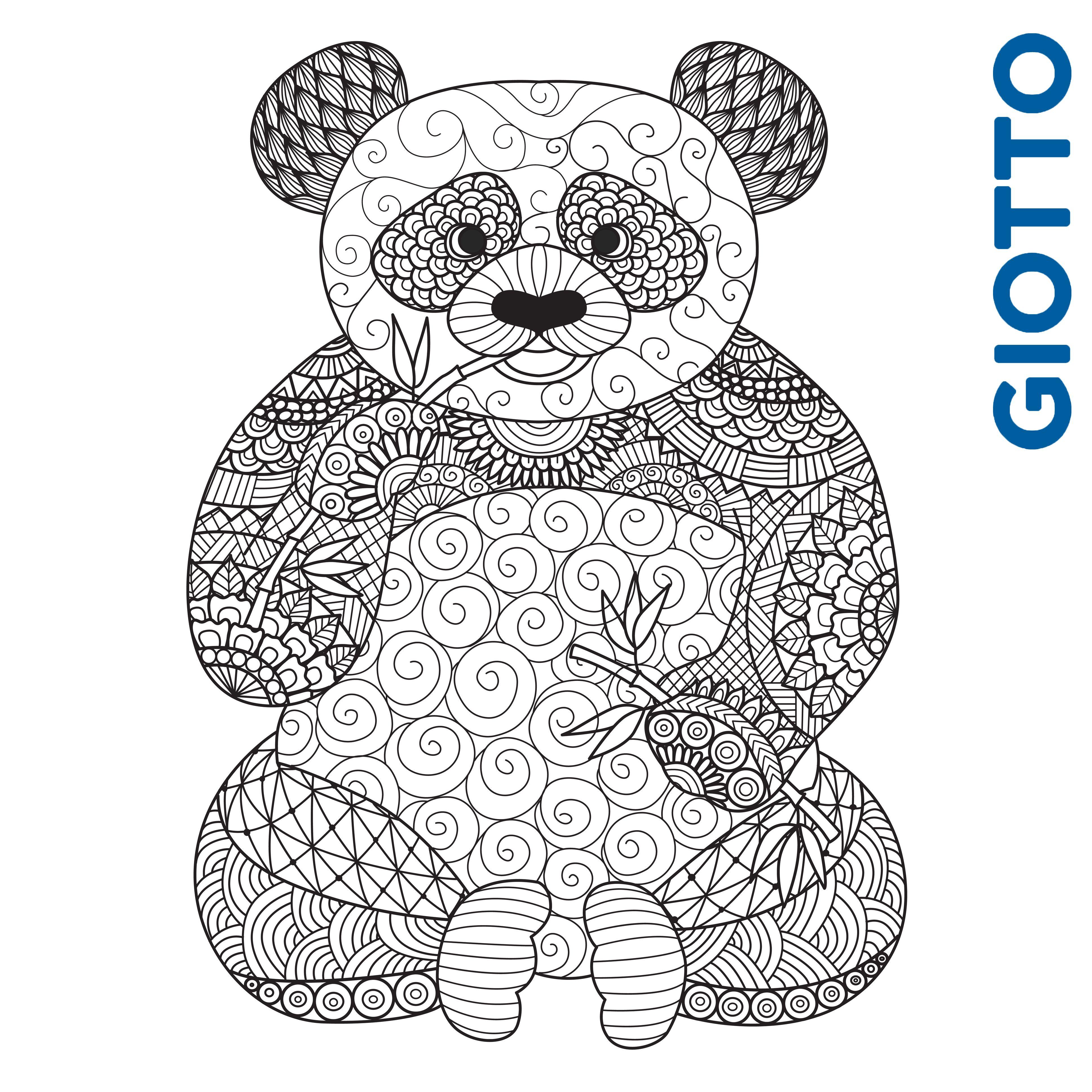 Un joli panda  colorier de toutes les couleurs Un coloriage  retrouver sur notre