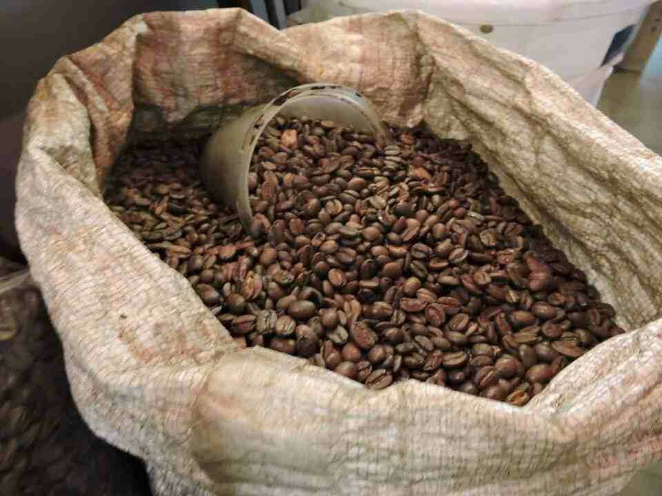 The earliest substantiated evidence of either coffee drinking or knowledge of the coffee tree is from the 15th century, in the Sufi monasteries of Yemen.[1] History of coffee - Wikipedia, the free encyclopedia https://en.m.wikipedia.org/wiki/History_of_coffee