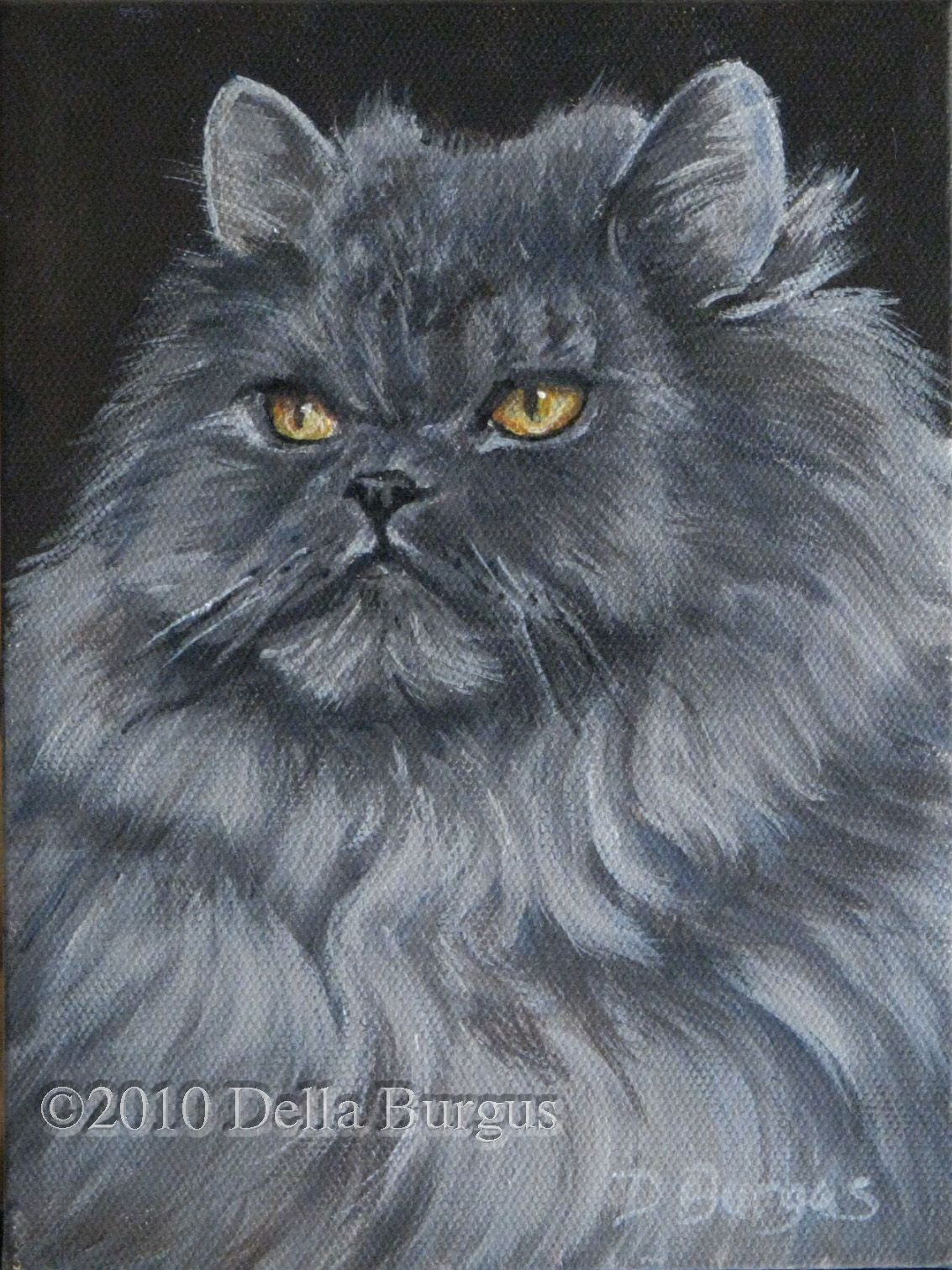 e of the most popular is the Persian Cat an absolutely unique