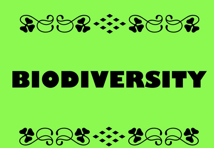 Check out this Kahoot called 'Biomes, Biodiversity