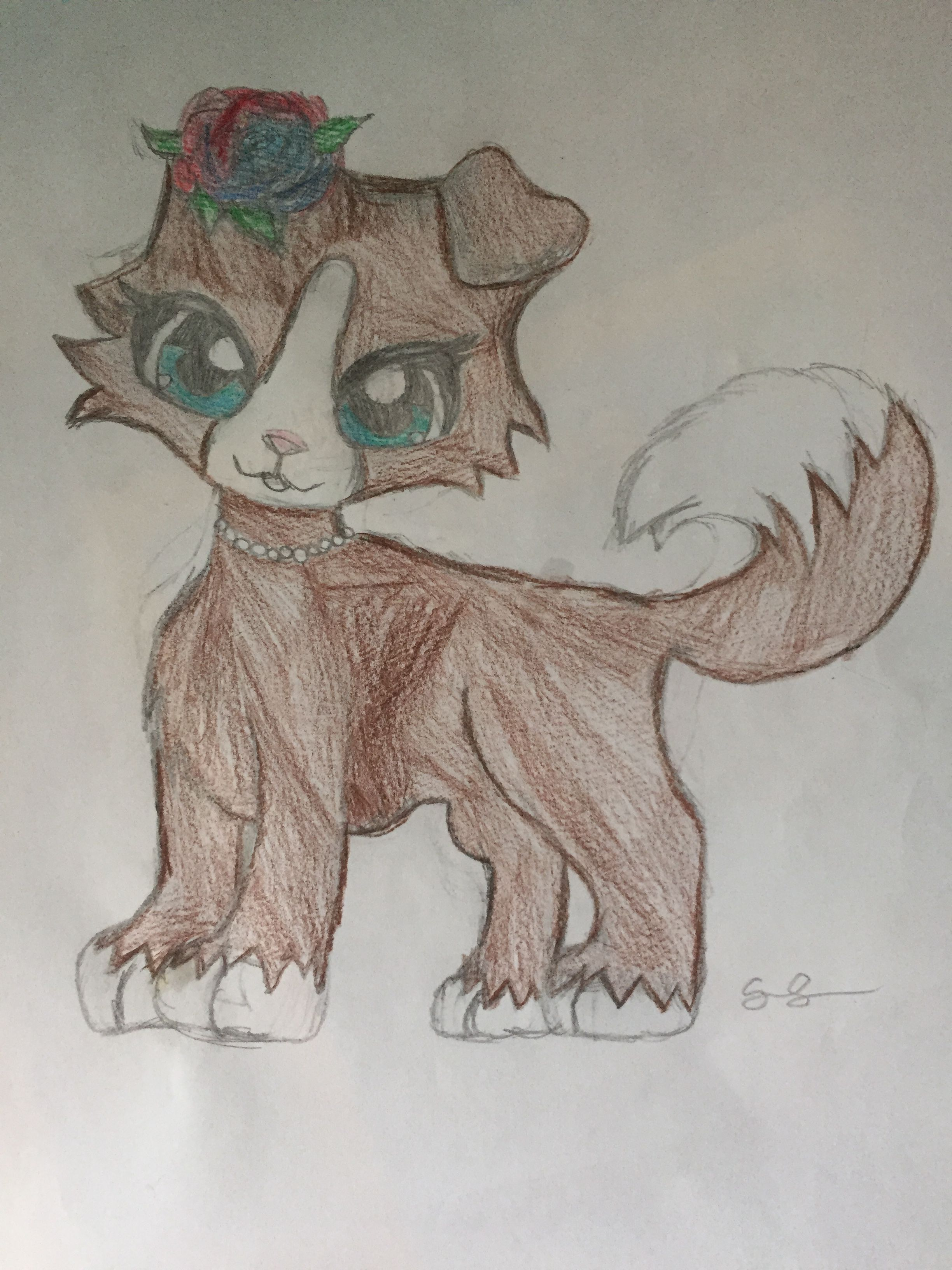 Lps Collie Drawing Lps Drawings Lps Collies Lps Pets