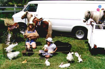 Rent Petting Zoo Party California Hire Pony Children S
