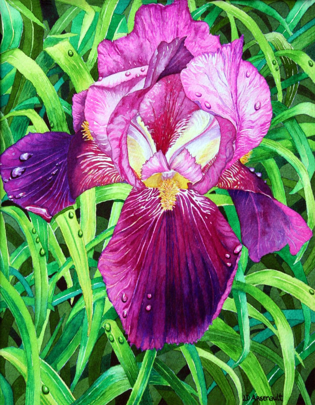 All The Colors Of The Iris Flower Iris Ii 10 X 8 Arches Watercolor