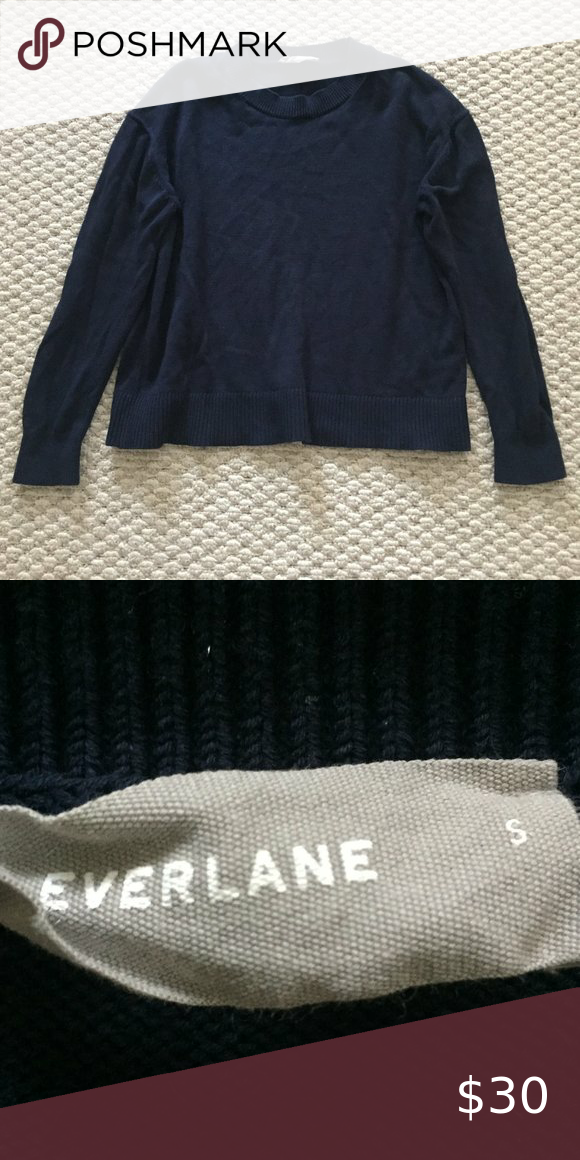 Everlane Blue Crew Neck Sweater