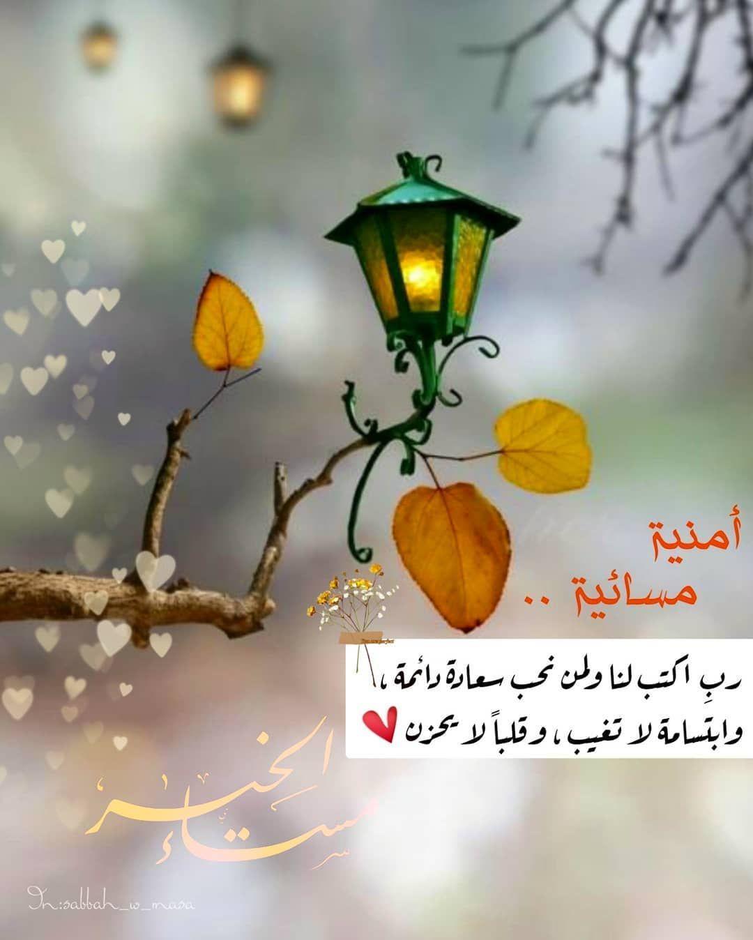 صبح و مساء On Instagram مساء الخيرات والمسرات مساء الورد ت Good Night Flowers Evening Greetings Good Morning Beautiful Images