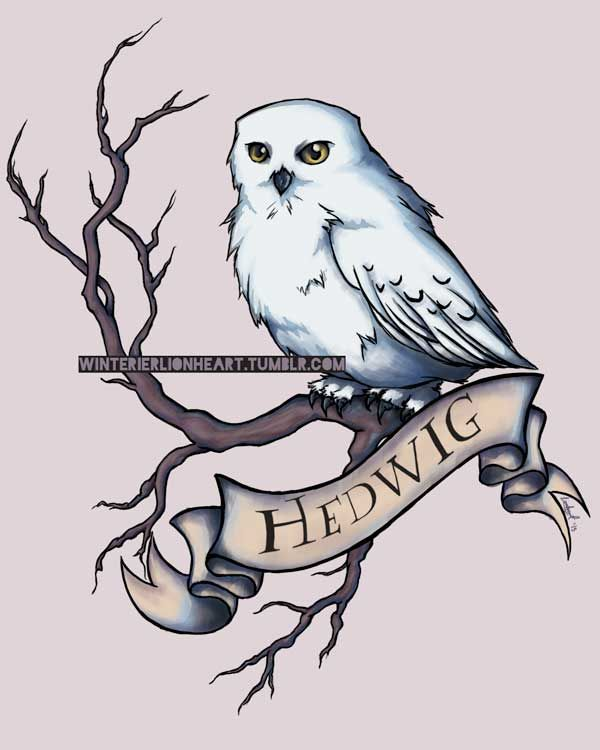 hedwig by whiteappleartist on deviantart hp owl post