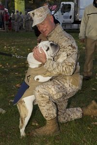 WASHINGTON, D.C. - The 35th commandant of the Marine Corps, General James F. Amos, plays with Lance Corporal Chesty, Marine Corps Mascot, during the 38th Marine Corps Marathon in Arlington, VA, on October 27, 2013. The Marathon consisted of 23,480 participants routing their way through Arlington, up Rock Creek Parkway, along the monuments and past the Pentagon, finishing at the Marine Corps War Memorial. (U.S. Marine Corps photo by Sgt. Mallory S. VanderSchans)(RELEASED)