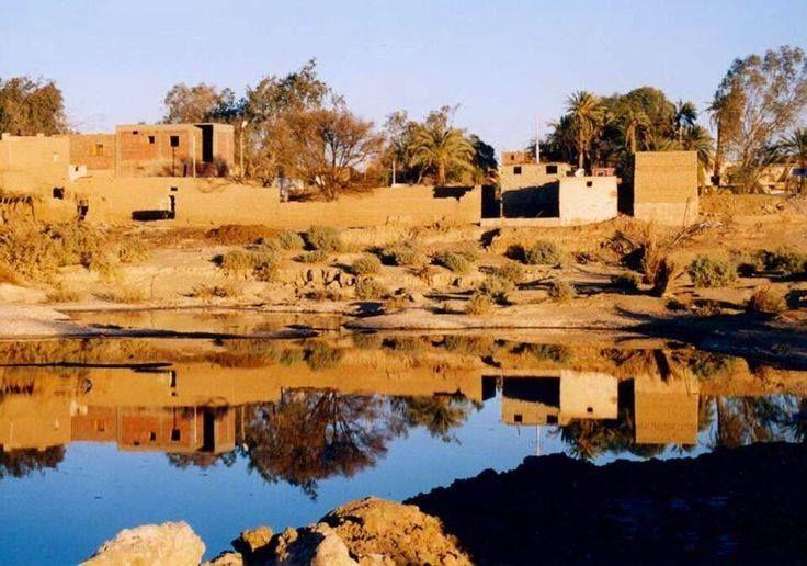 Siwa Oasis_2, Egypt.