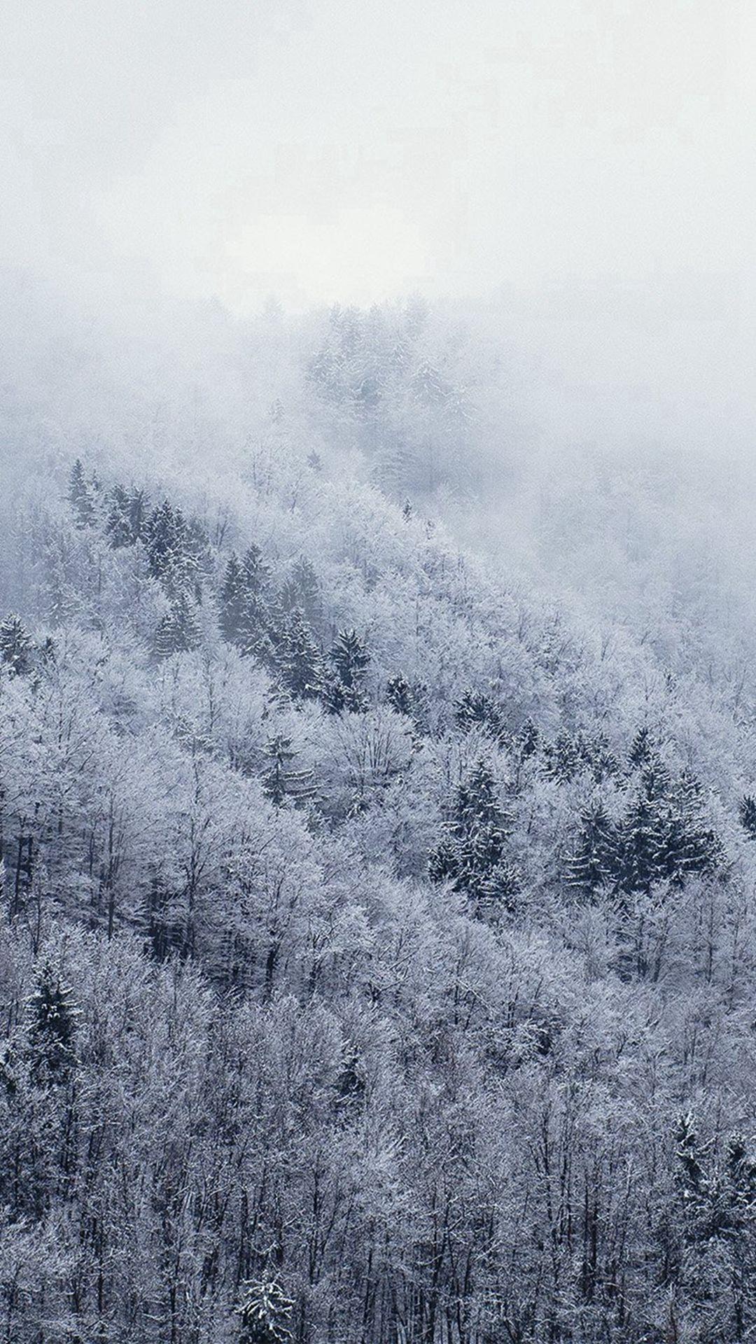 Must see Wallpaper Mountain Christmas - e50452a64c2e2c0126fdc4d06ae88f47  HD_29049.jpg
