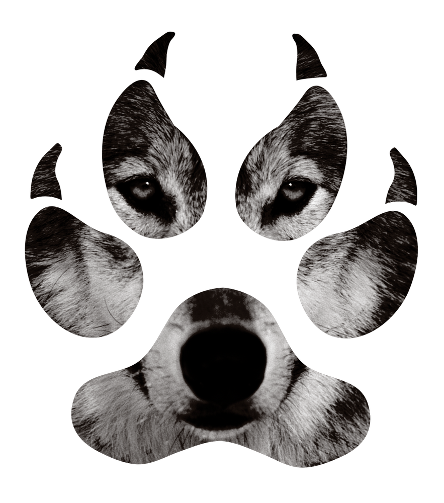 Wolf S Paw Black And White Art Print By Catbydesign X Small Wolf Paw Wolf Paw Print Cute Wolf Drawings