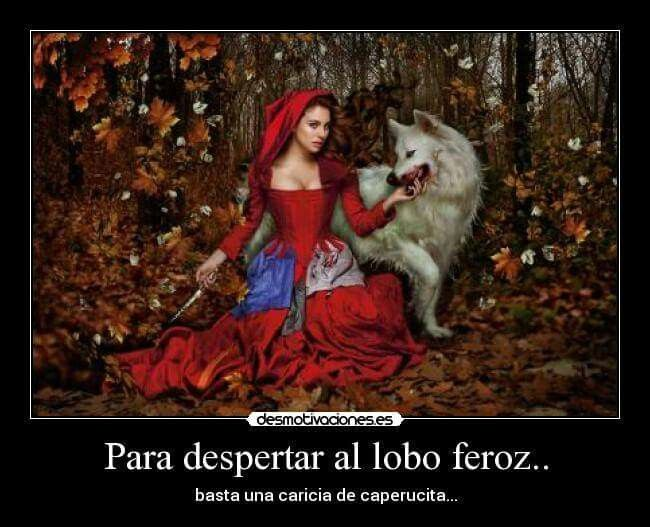 Lobo Feroz Quotes Red Riding Hood Little Red Y Quotes