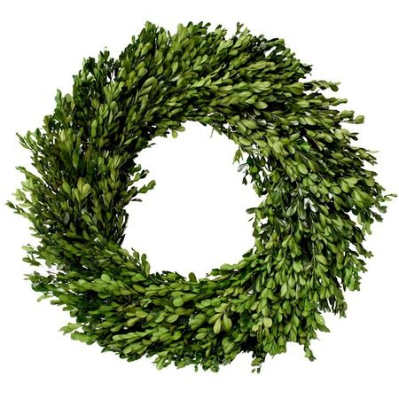 """I pinned this 14"""" Preserved Boxwood Wreath from the Mills Floral Company event at Joss and Main!"""
