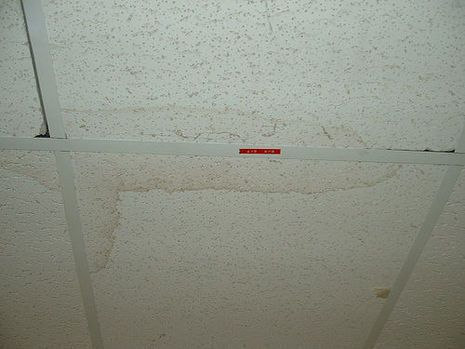 Bad Looking Stained Old Drop Ceilings Faux Tin Ceiling Tiles Is The Perfect Solution Water Stain On Ceiling Remove Water Stains Cleaning Hacks