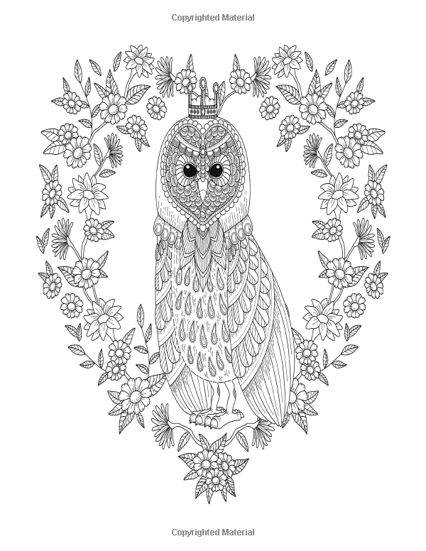 Owl Adult Coloring Book: Large Stress Relieving, Relaxing ...