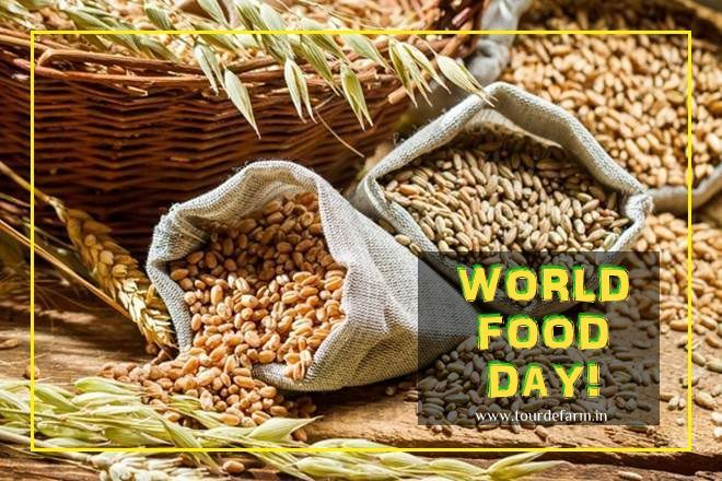 world food day with an increasing world population farmers will play a crucial role in providing food for all of us let s pledge to invest in food