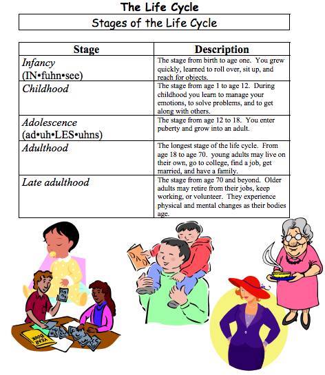 human development from childhood to late adulthood What are the five life stages a: in late childhood adulthood and old age the human life cycle starts at fertilization, goes th full answer.