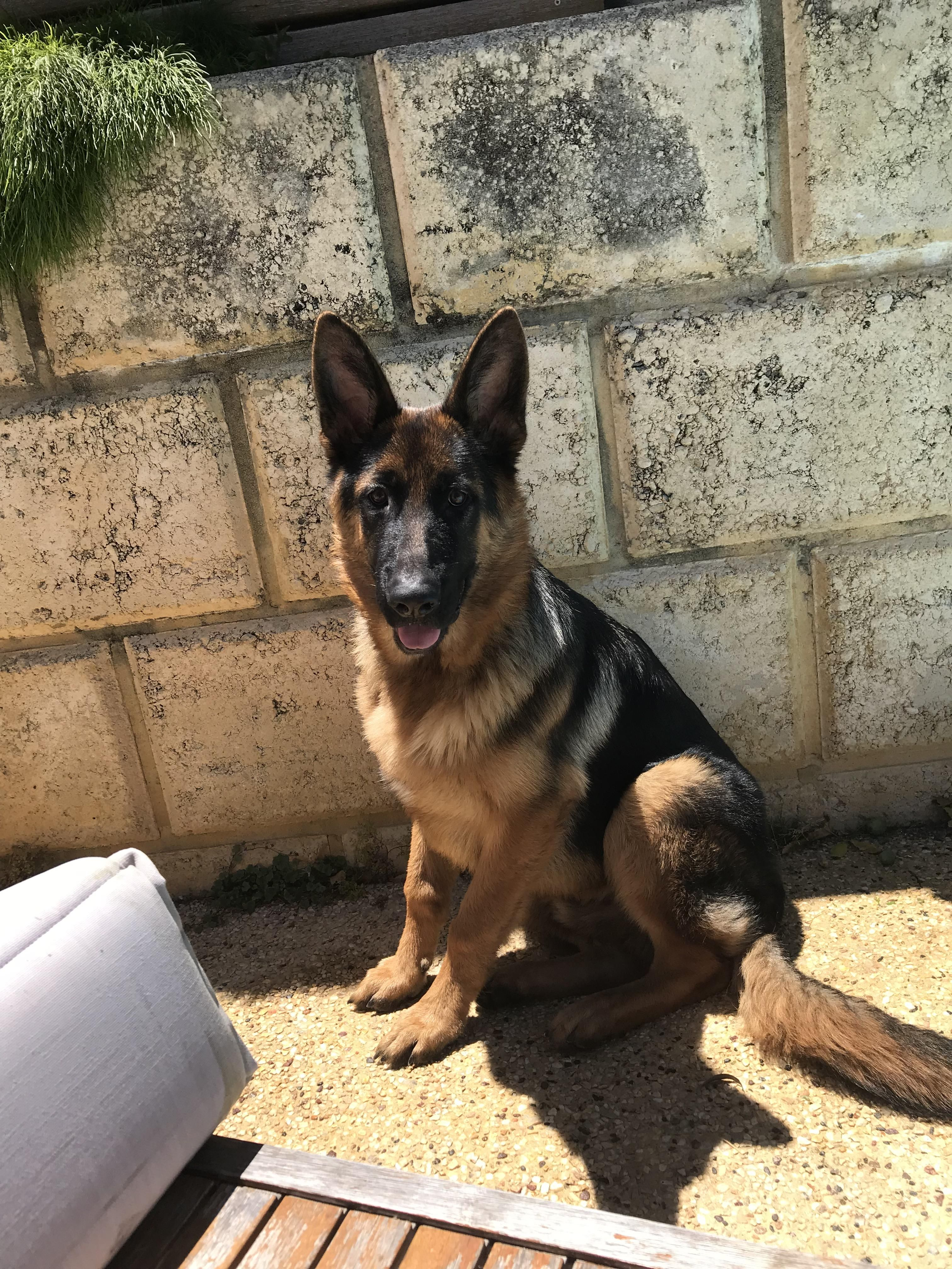 My Beautiful 6 Month Old Please Donate Us Hello There Bright