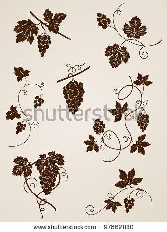 Vector decorative grape vine elements for design grape for Buy grape vines for crafts