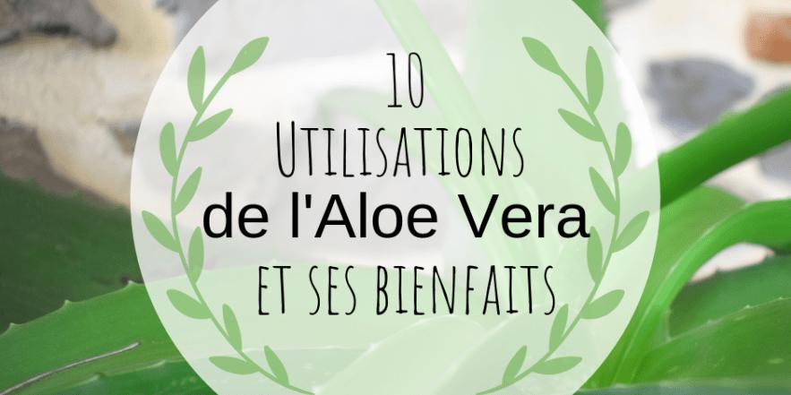 Les différentes utilisations de l'aloe vera et ses bienfaits –   – Ideas de jardinería