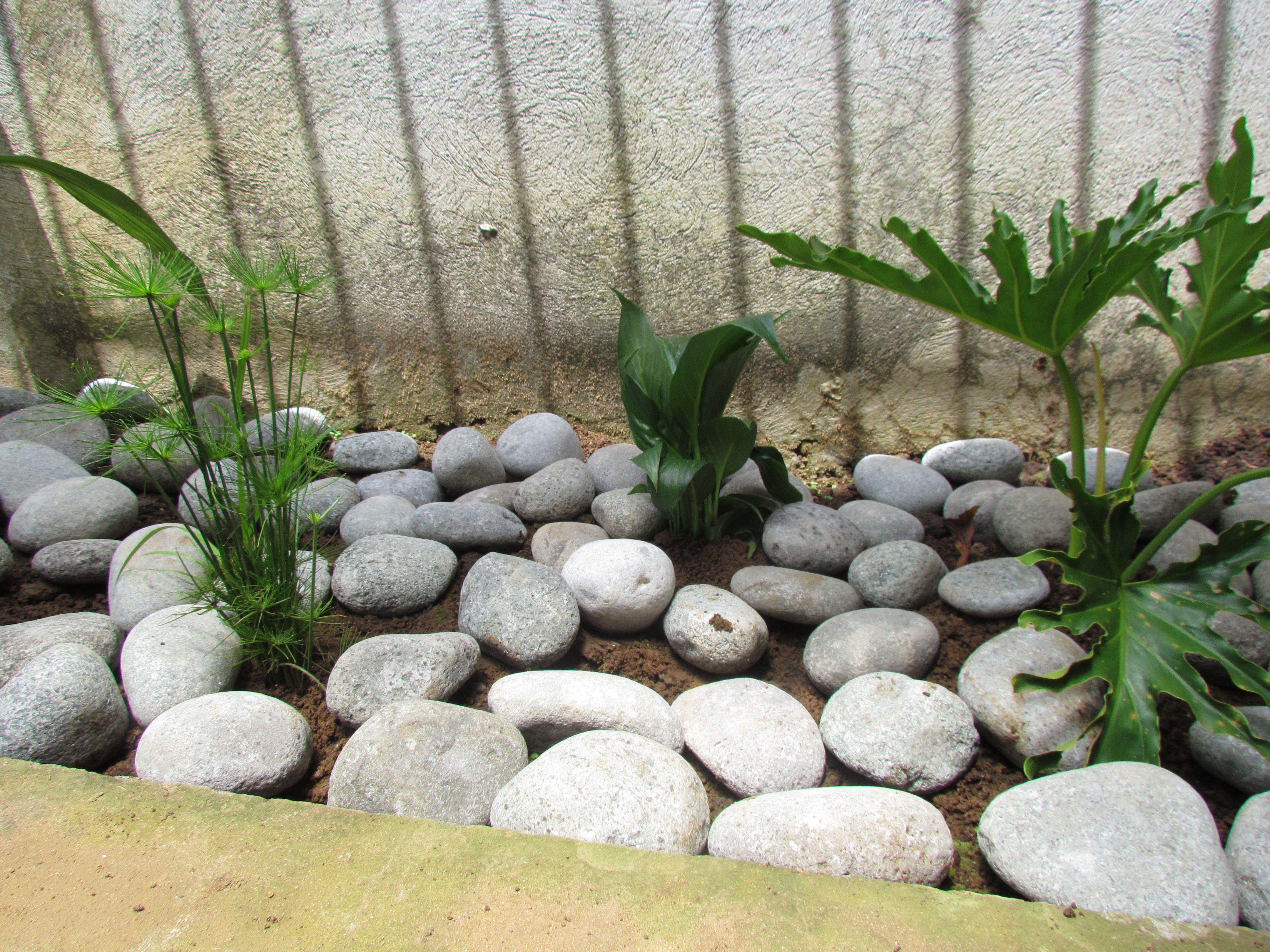 Jard n semi seco listo con las piedras de r o jardines for Piedras de rio para jardin