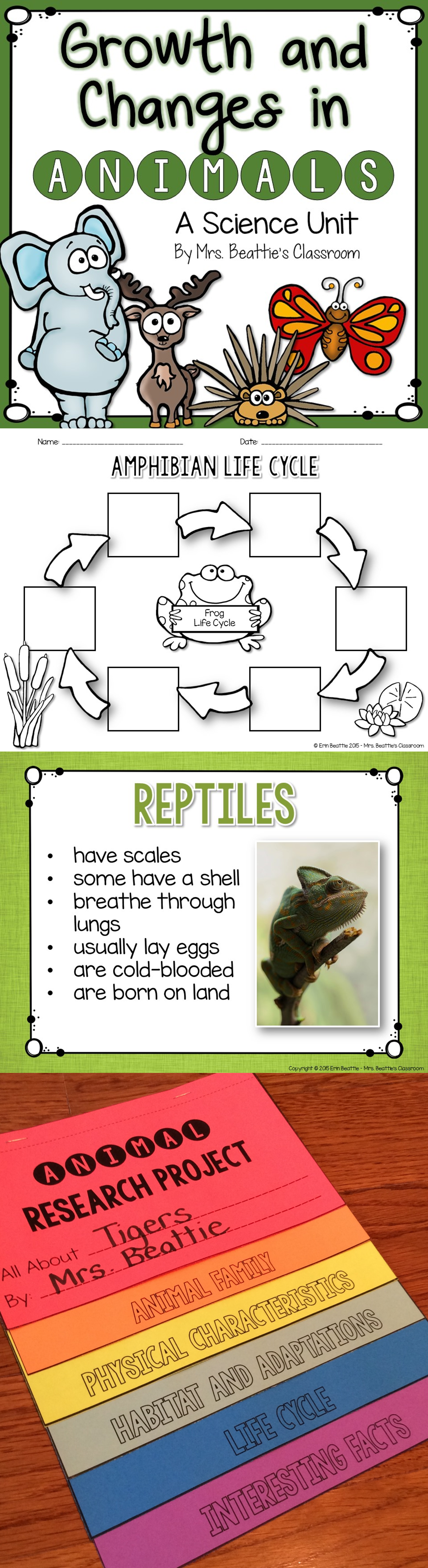 Teaching second-grade science? This is a complete unit for teaching about  growth and changes in animals.…   Grade 2 science [ 4323 x 1180 Pixel ]