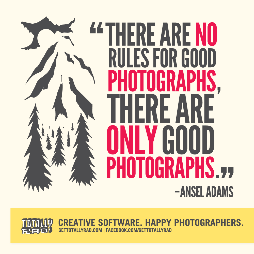 Inspirational Photography Quotes  Website