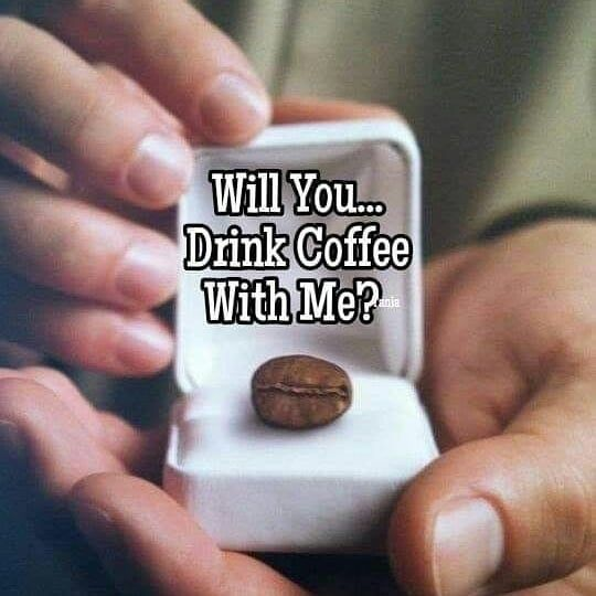 Hauskat Kahvikupit