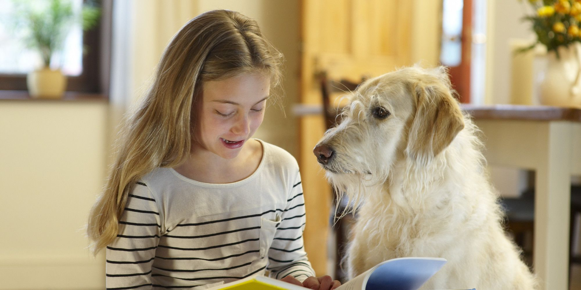Therapy Dogs Are Motivating Kids Who Have Trouble Reading To