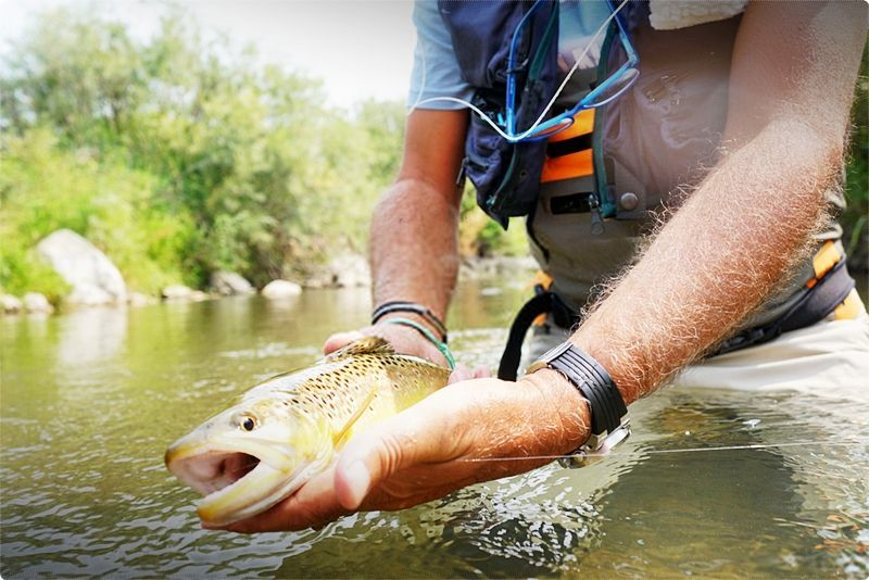 What You Don T Know About Fly Fishing In Montana Fly Fishing Fish Best Camping Gear