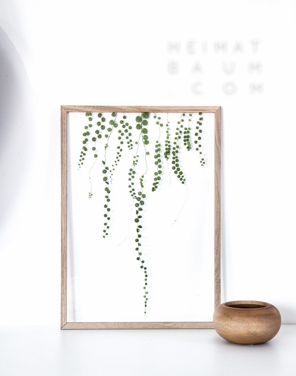 moebe frames plants heimatbaum.com | DIY | Pinterest | Deko ...