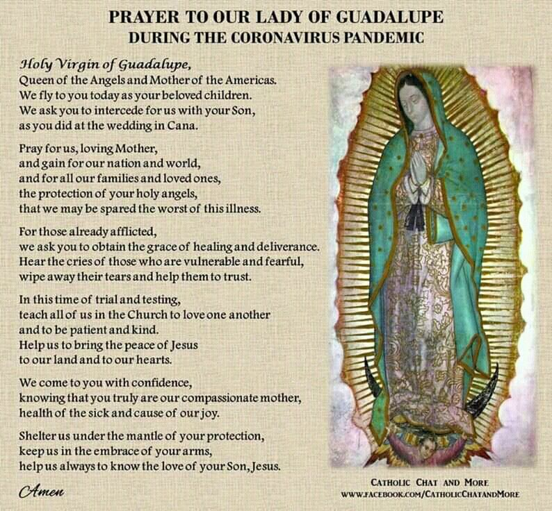 Pin By Sharon Smith On Trust God In 2020 With Images Catholic Saints Prayers Prayer For Healing The Sick Special Prayers