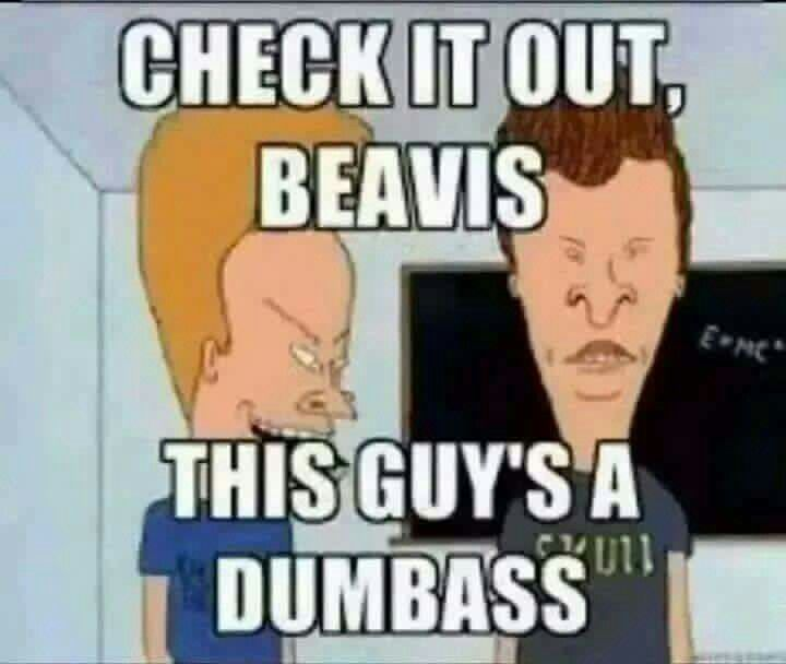 Beavis And Butthead Meme With Images Beavis And Butthead