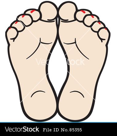 feet vector image on vectorstock feet care downloadable art feet feet vector image on vectorstock feet