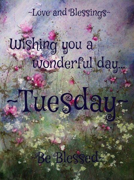Beau Wishing You A Wonderful Tuesday! ♥