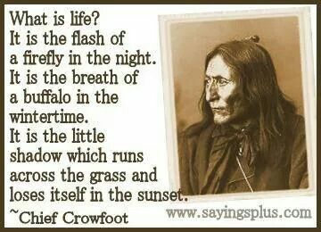 Love !!! (With images) American quotes, Native american