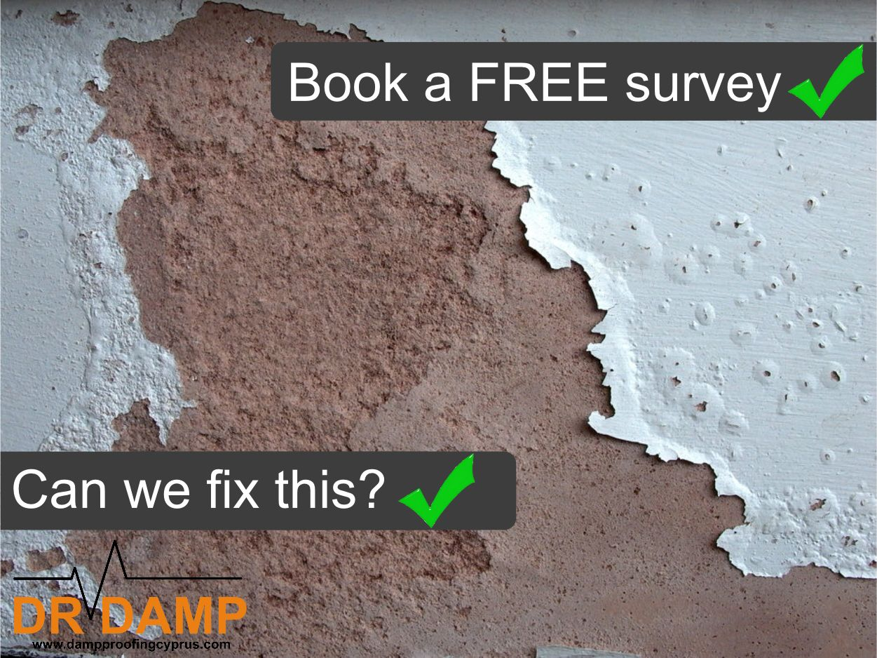 damp proofing in cyprus there is only one dr damp damp proofing rh pinterest com