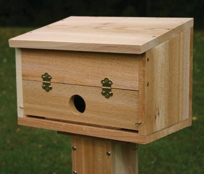 700_stovall-wooden-roosting-box