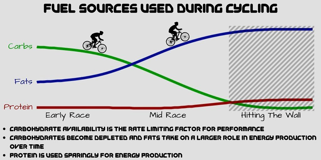 Hitting The Wall How To Fuel Your Body For Cycling Performance