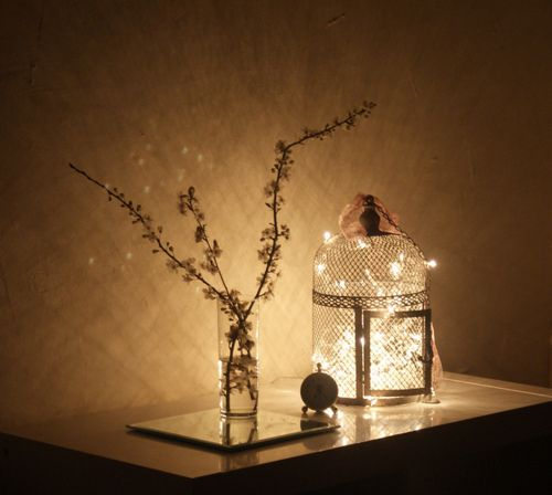 lights in a birdcage