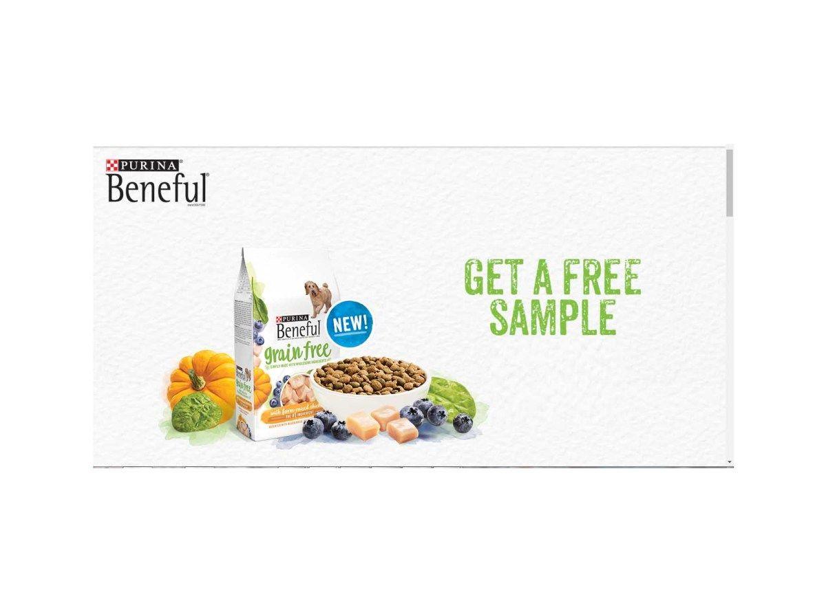 Free Purina Beneful Grain Free Dog Food Sample At Walmart Grain